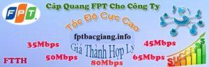 Cáp Quang FPT cho Công Ty